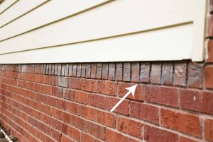 How to remove paint from brick one cherry tree lane - Exterior paint removal from brick minimalist ...